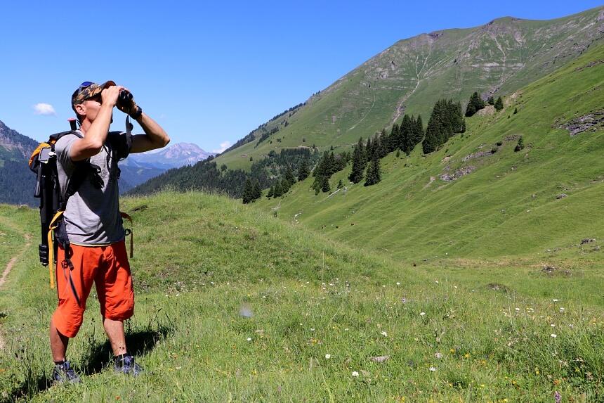 Gids Christophe speurt de bergflanken af op zoek naar marmotten