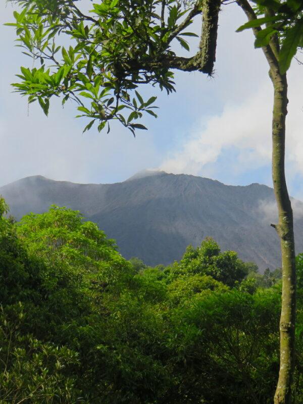 De Pacaya vulkaan in Guatemala