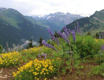 15x doen in de Franse Alpen in de zomer