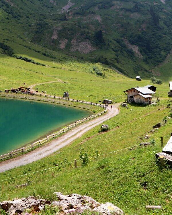 Zomervakantie in de Franse Alpen