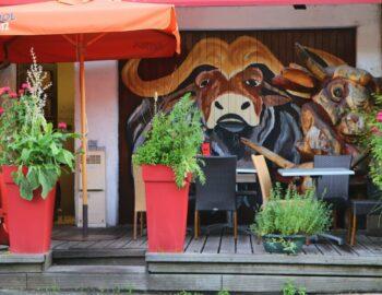 Reisinspiratie: zomervakantie in de Franse Alpen