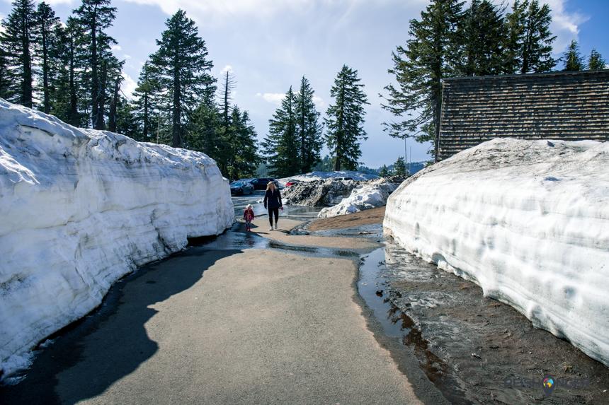 Muur van sneeuw Oregon