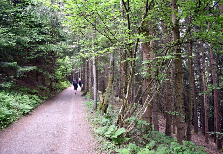 Wandelen in Karinthië