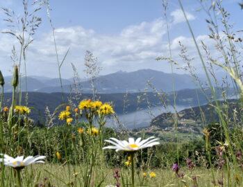 Karinthië: de zachte kant van Oostenrijk