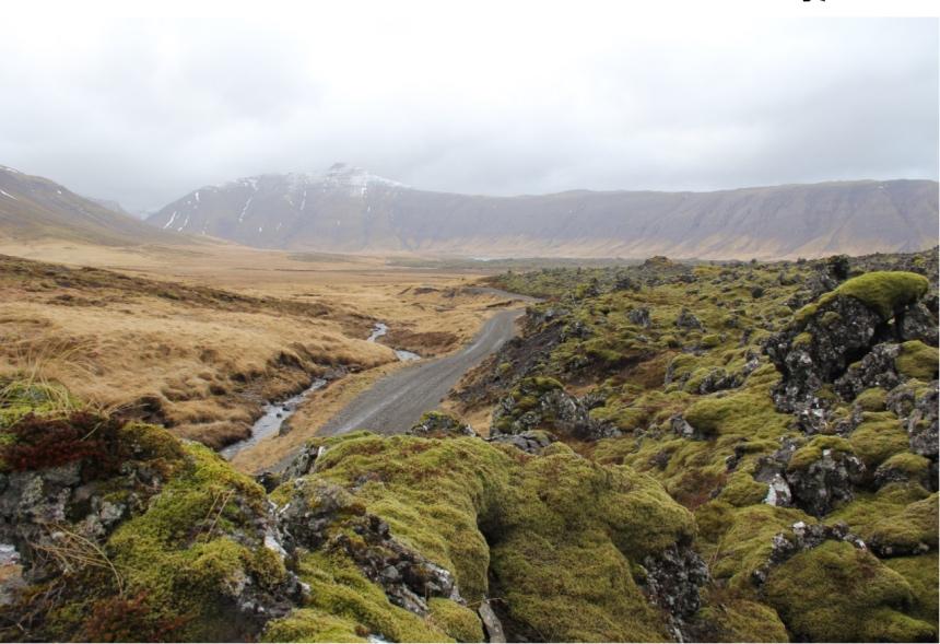 Detour 558 op IJsland