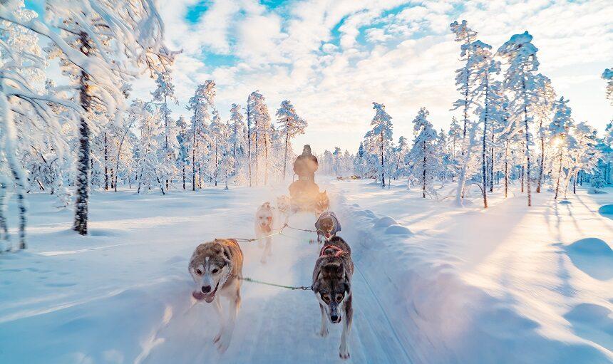 Finland_husky_trip
