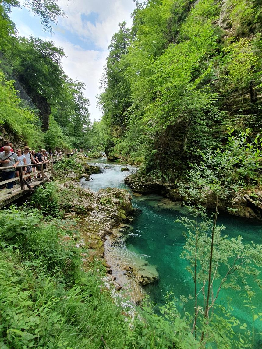 Natuur in Slovenie