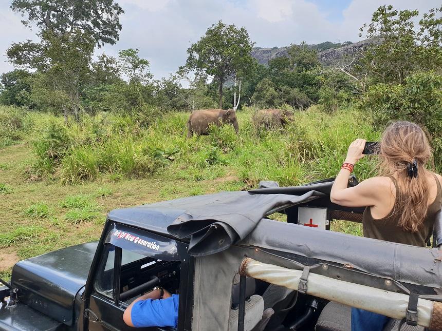 hurulu jeepsafari