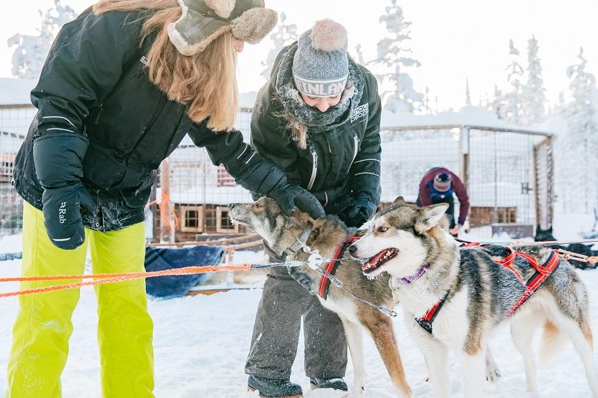 activiteiten in Fins Lapland huskytocht