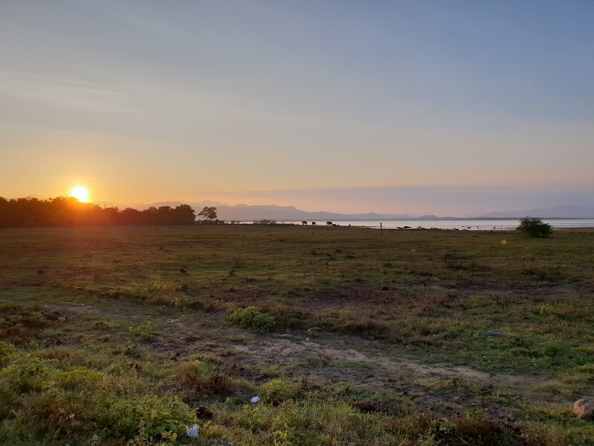udawalawe safari zonsondergang