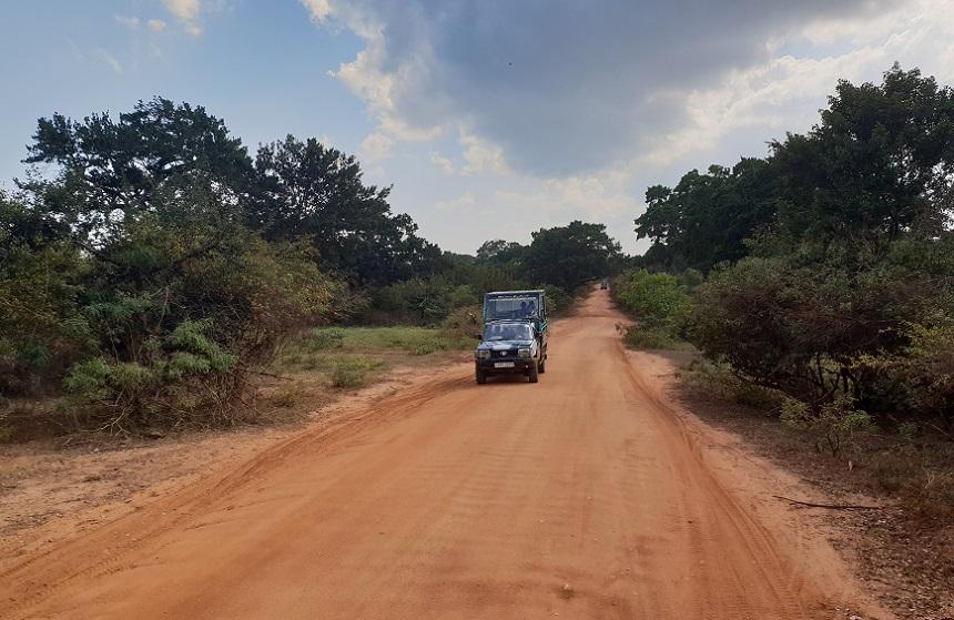 yala safari wegen