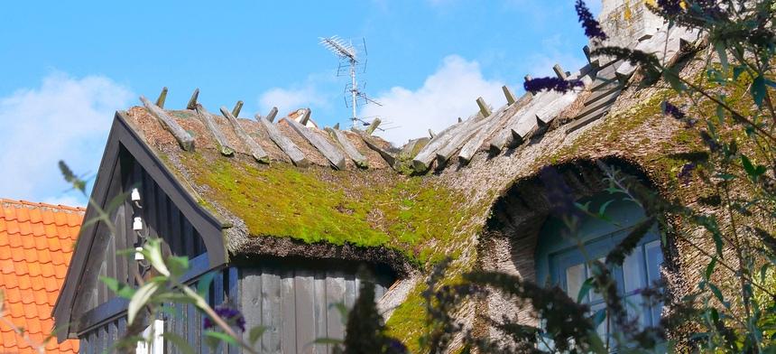 Op Sjaelland is altijd wind. De daken zijn verzwaard.