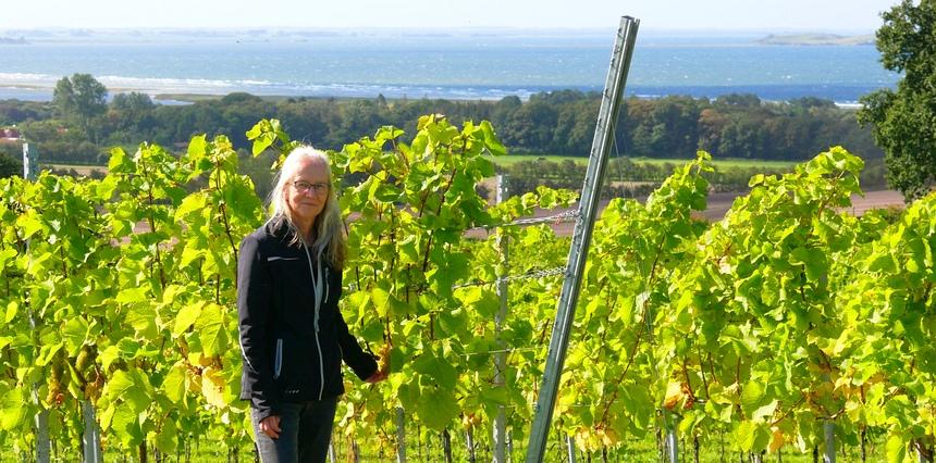 De witte wijnen van Verjhøj Vingård zijn geweldig! Nina Fink is trots.