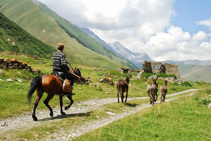 Paardrijden Georgië