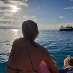 Dolfijnen spotten op de Malediven