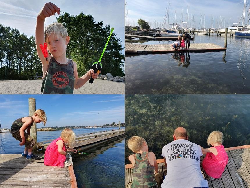 Krabben vangen in de jachthaven van Sønderborg