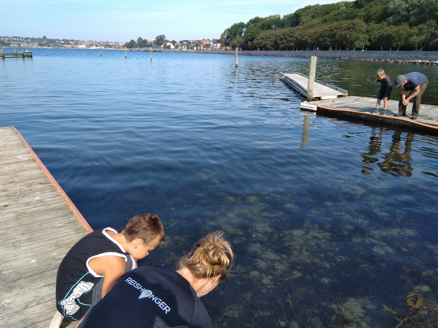 Krabben vangen is zo'n beetje de nationale hobby van Deense kinderen