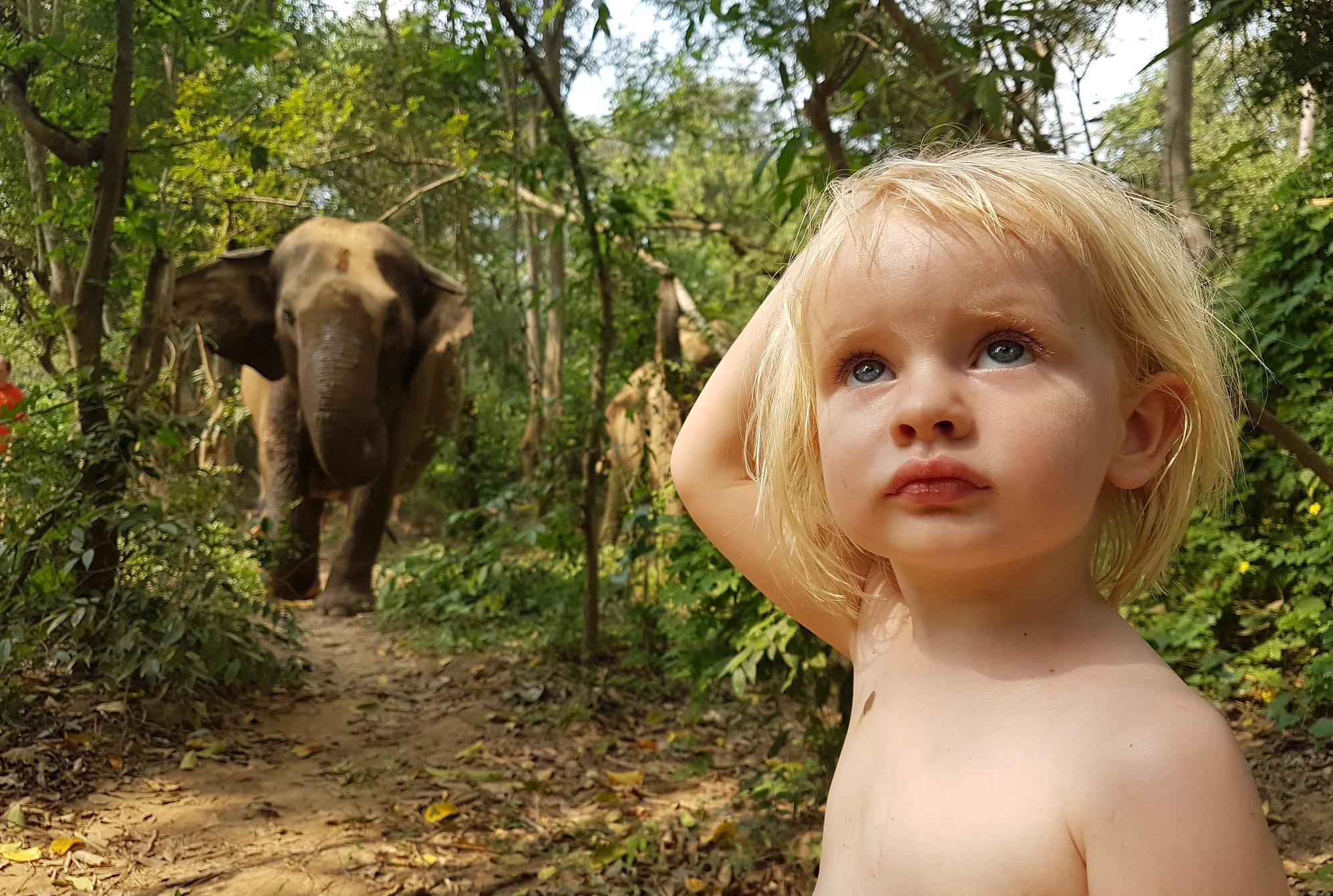 daelynn olifant thailand