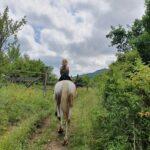 Paardrijden in Kroatië