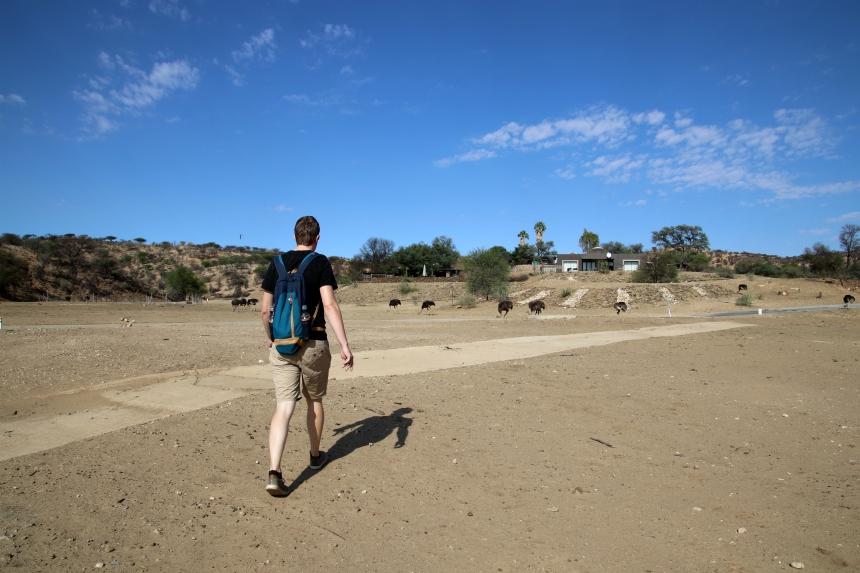 In het Daan Viljoen Game Reserve wandel je tussen de wilde dieren