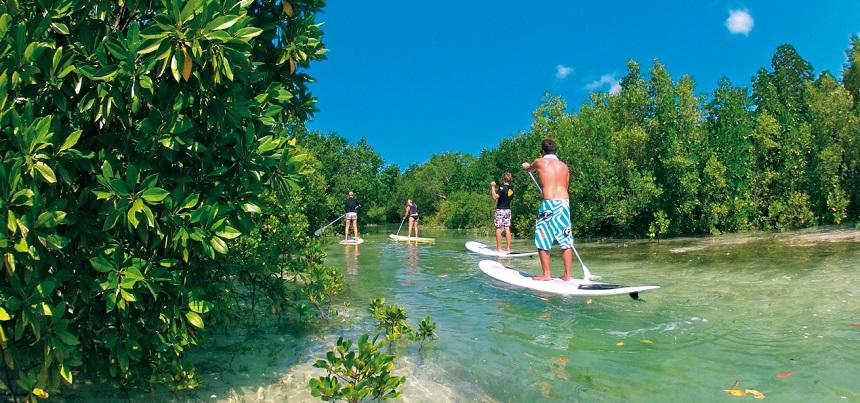 Suppen Mangrove SURF Zanzibar