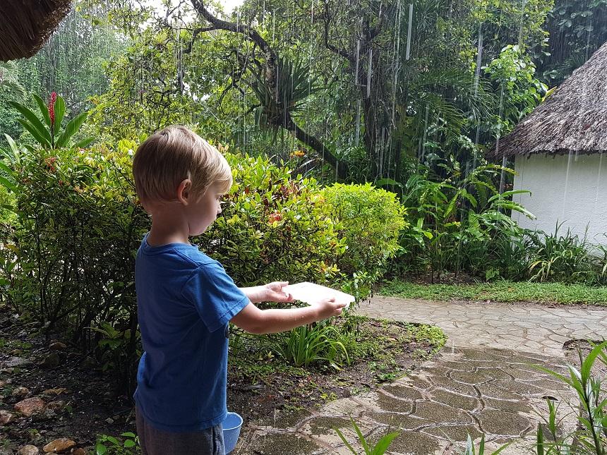 Regen in Belize - Maya Mountain Lodge
