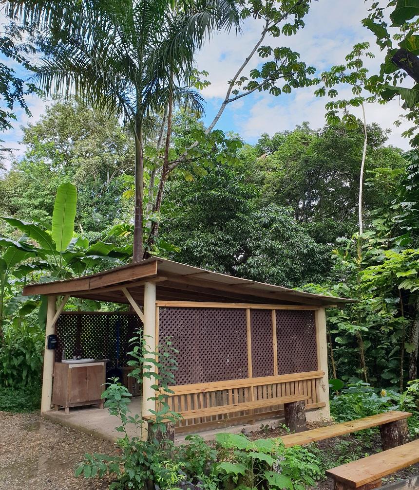 Belize Iguana Project - San Ignacio Resort Hotel