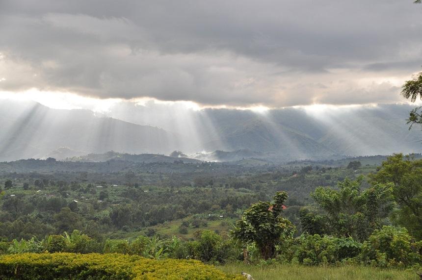 Rwenzori gebergte Oeganda Congo