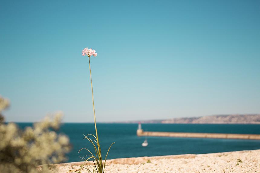 Marseille in de beste zonbestemmingen europa