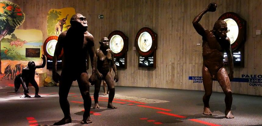 Het Neanderthaler-museum is echt de moeite waard.