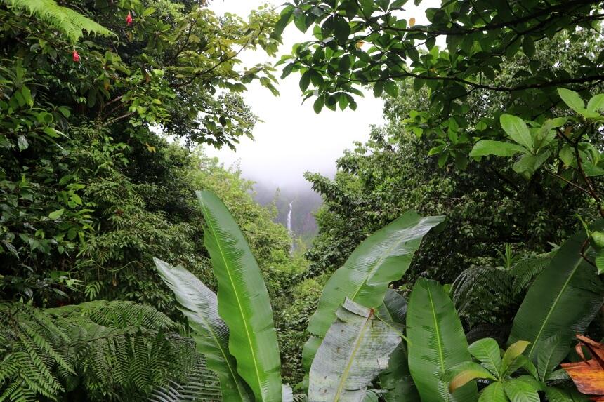 De watervallen van Carbet op het groene eiland Basse-Terre