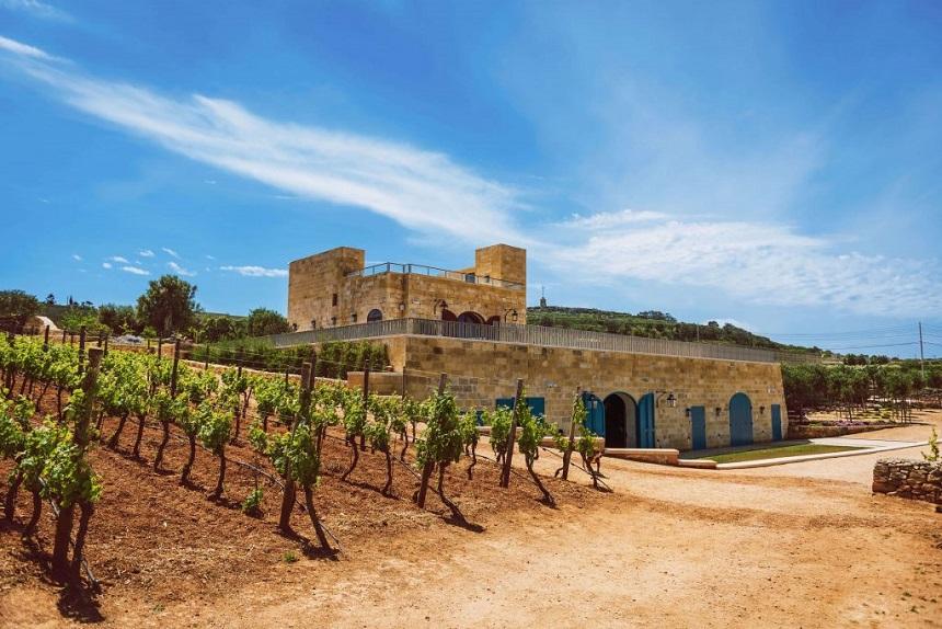 Ta Betta winery