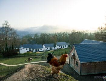 Vertier voor het gezin in de Belgische Ardennen