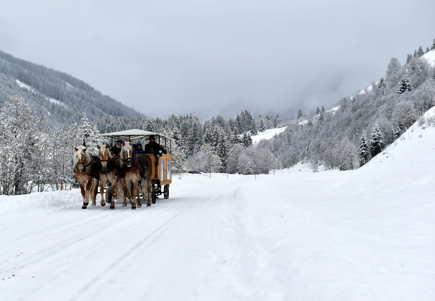 Paard en wagen in Winters wonderland Wildschönau