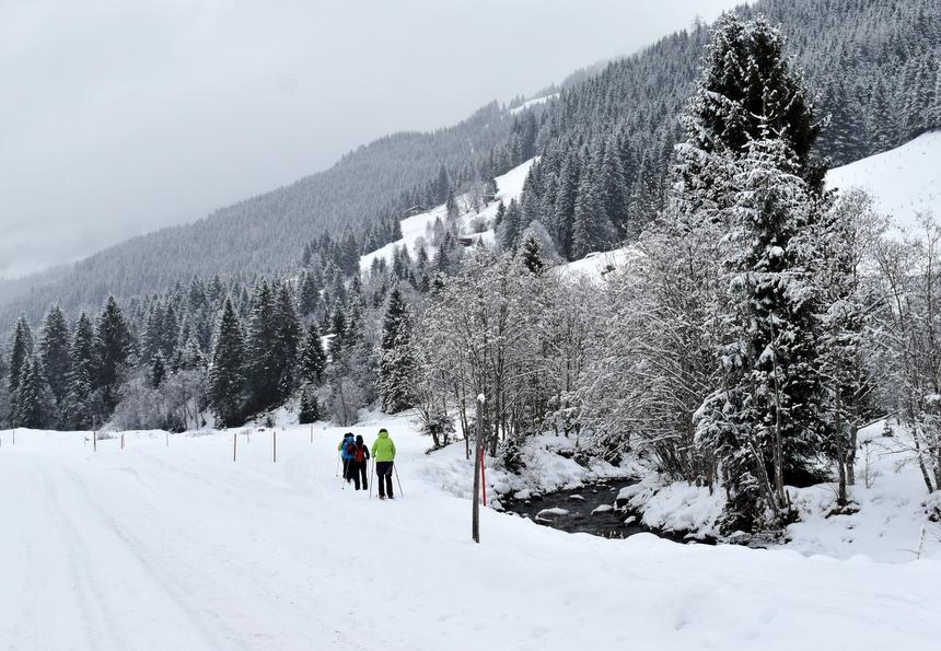 Langlaufers in Schönanger