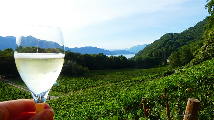 Domaine Xavier Jacqueline, Aix les Bains, wijnproeverij, wijngaard