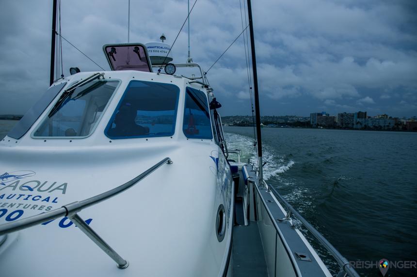De Sting-Ray van Aqua Nautical Adventures