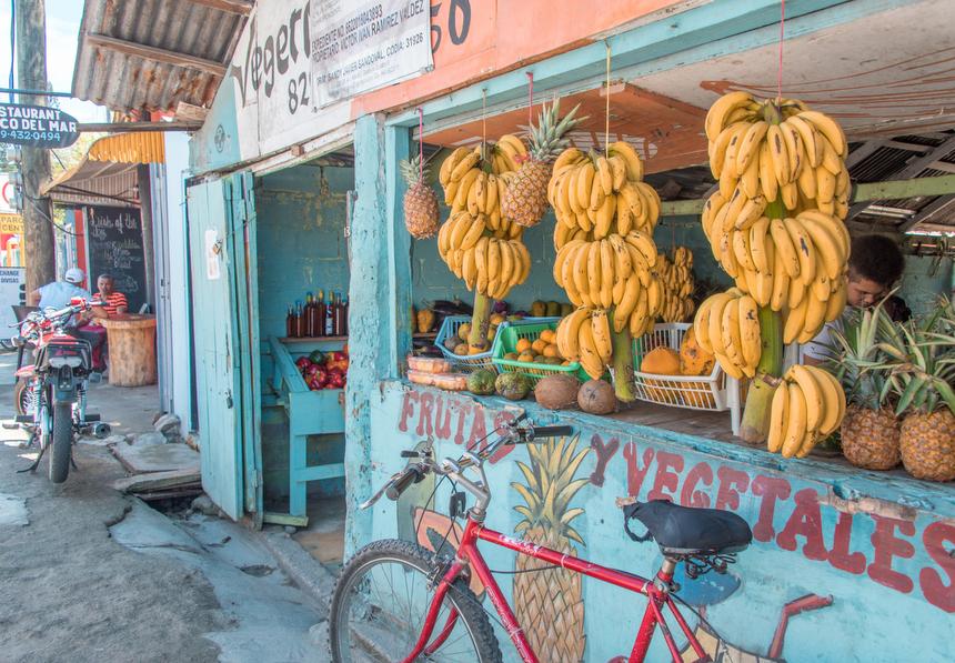 fruitwinkel Dominicaanse Republiek