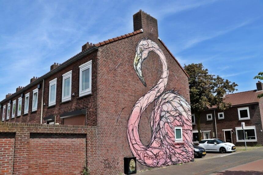 Deze flamingo is van de bekende Vlaamse street artist Dzia