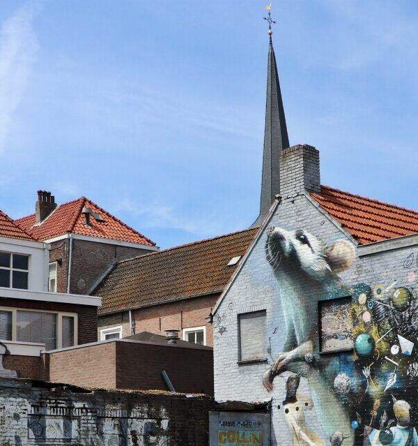 Fietstocht langs street art in Breda