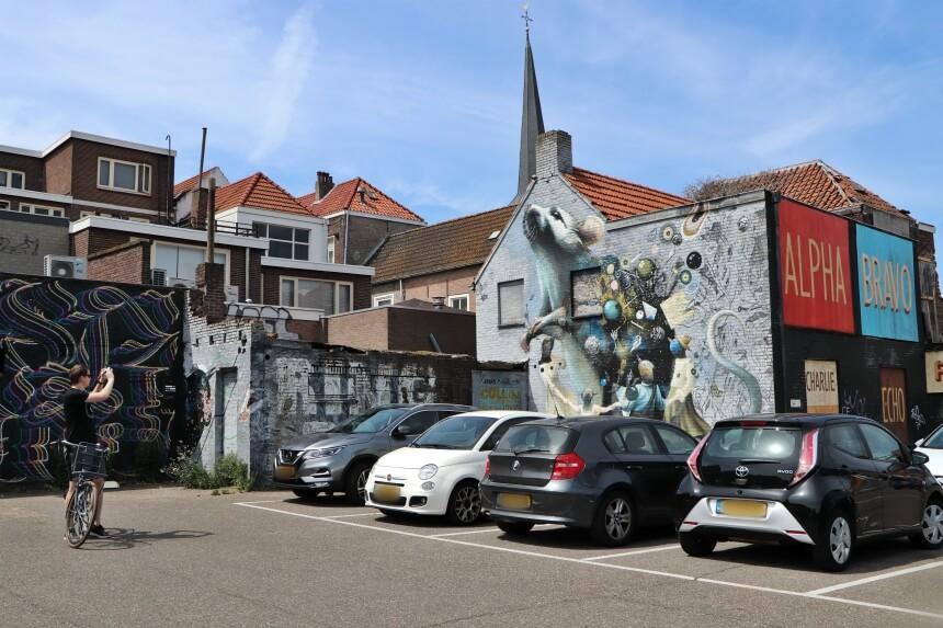 Op de Molsparking vind je meerdere murals bij elkaar