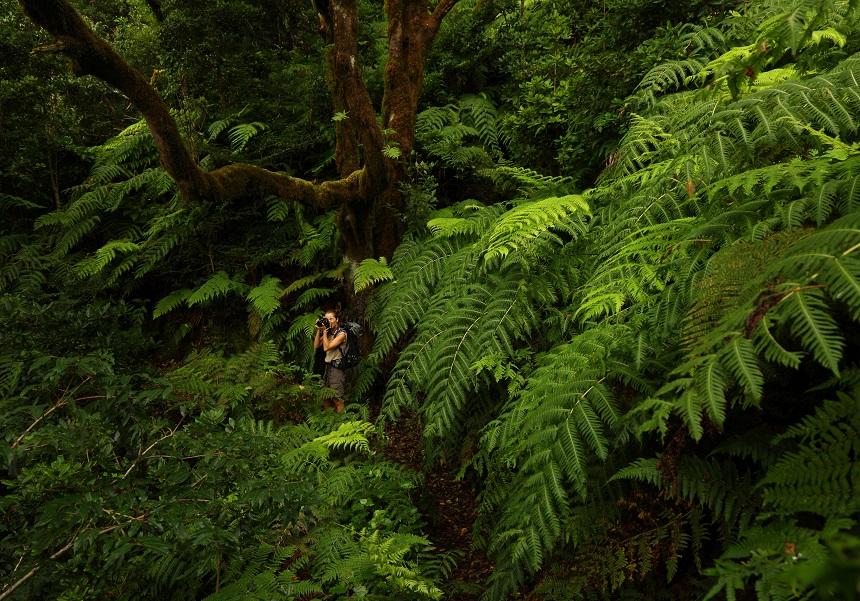 het prachtige natuurgebied Anaga
