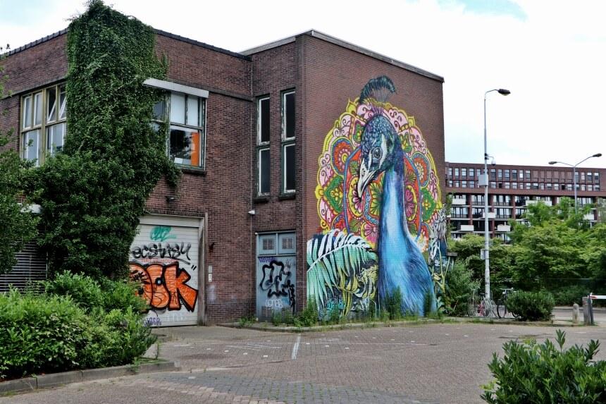 Vanuit HUP hotel kun je fietsen naar Eindhoven
