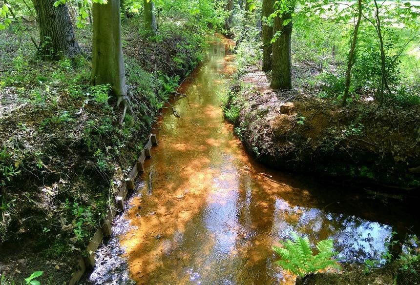 De beken op de Veluwe zijn gegraven voor de watermolens.