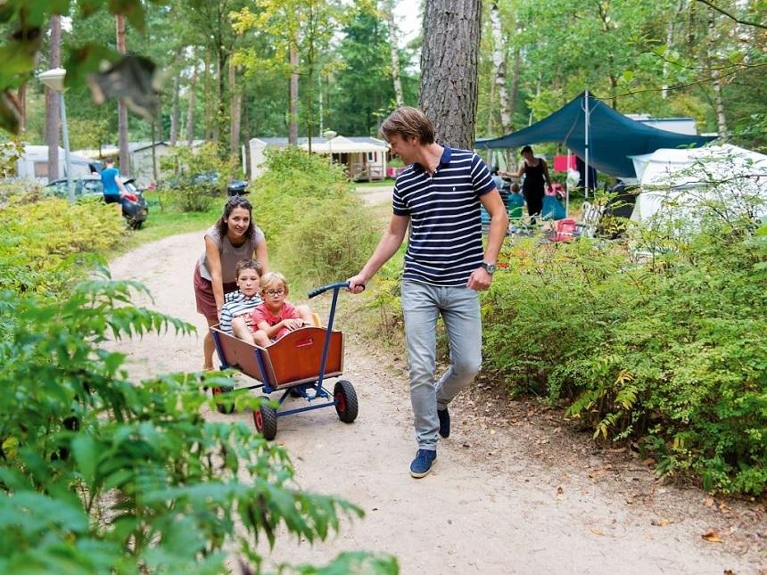 zomervakantie camping Rabbit-Hill