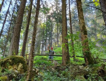 Vrije natuur in Tirol