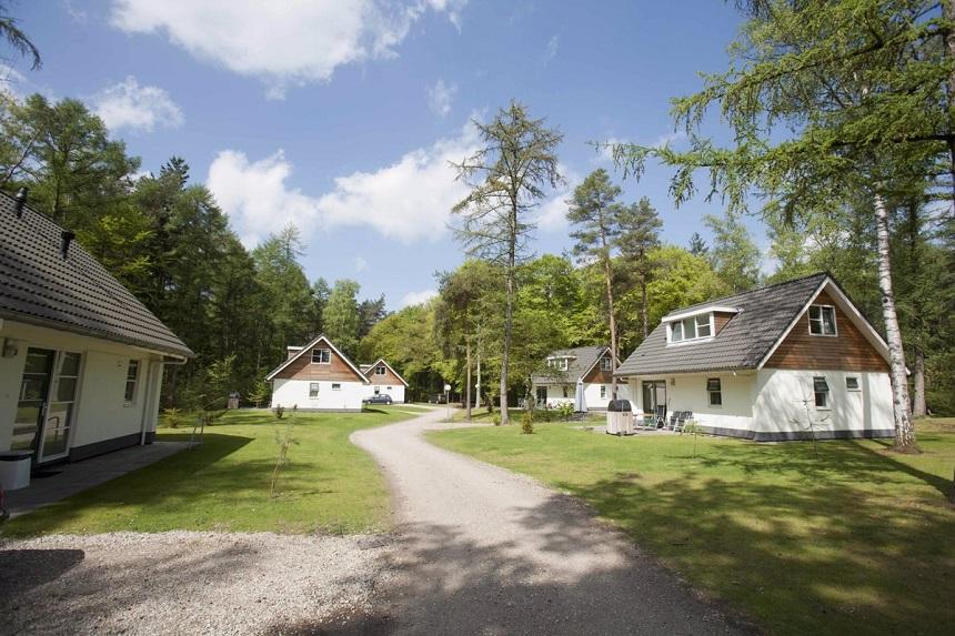 vakantiepark het Grote Bos