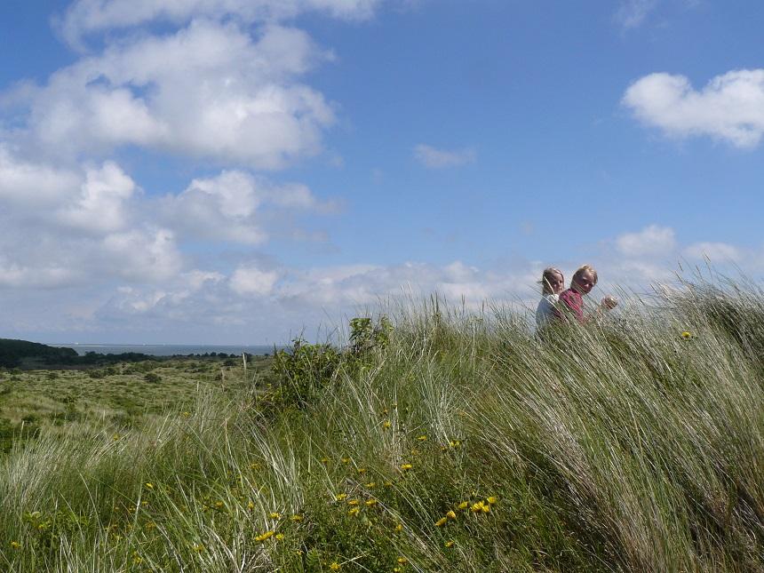 wad duinen vlieland