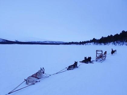 Husky Home Kiruna