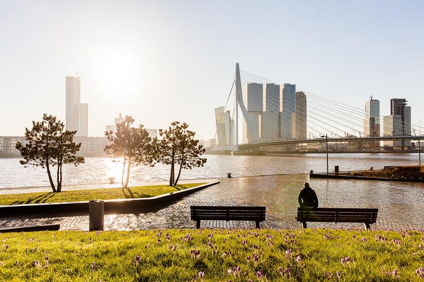 Rotterdam_Guido_Pijper